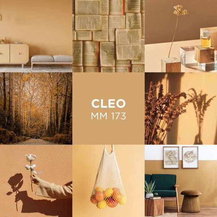 Novacolor MATmotion - sisustusmaali trendiväri 2021 - Cleo MM 173